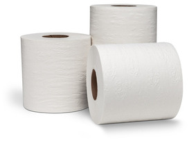 "Picture of item 887-623 a Dubl-Nature® Green Seal™ Universal-Use Bath Tissue.  4-3/8"" x 3-3/4"".  2-Ply.  500 Sheets/Roll."